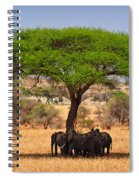 Huddled In Shade Spiral Notebook