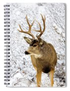 Huge Buck Deer In The Snowy Woods Spiral Notebook