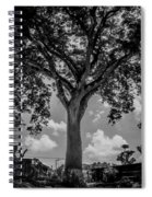 Huge Tree 12 Spiral Notebook