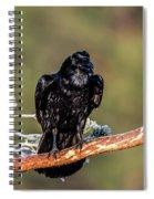 Huginn The Raven Spiral Notebook