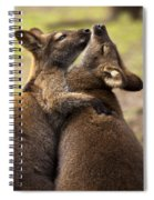 Hugs Spiral Notebook