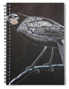 Huia Spiral Notebook