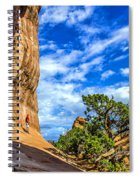 Human Insignificance Spiral Notebook