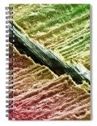 Human Tooth Dentine, Sem Spiral Notebook
