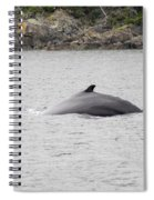 Humpback Whale 5 Spiral Notebook