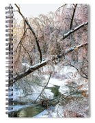 Humber River Winter 3 Spiral Notebook