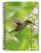 Hummer And Obedient Plant Spiral Notebook