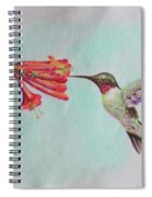Humming Spiral Notebook