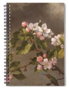 Hummingbird And Apple Blossoms Spiral Notebook