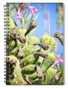 Hummingbird And The Saguaro  Spiral Notebook