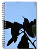 Hummingbird At Sunrise Silhouette Spiral Notebook