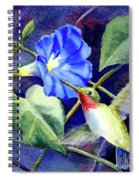 Hummingbird Delight Spiral Notebook