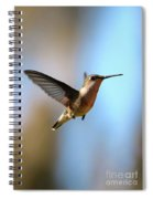 Hummingbird Friend Spiral Notebook