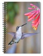 Hummingbird Happiness 2 Spiral Notebook