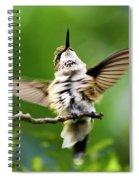 Hummingbird Happy Dance Spiral Notebook
