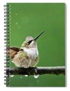 Hummingbird In The Rain Spiral Notebook