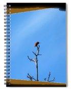 Hummingbird Optical Zoom Spiral Notebook