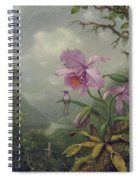 Hummingbird Perched On An Orchid Plant Spiral Notebook
