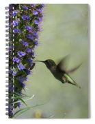 Hummingbird Sharing Spiral Notebook