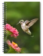 Hummingbird Sunrise Spiral Notebook