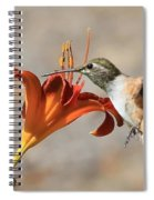 Hummingbird Whisper  Spiral Notebook