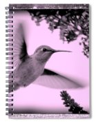 Hummingbird With Old-fashioned Frame 2  Spiral Notebook
