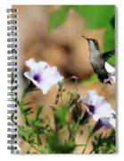 Hummmer Spiral Notebook
