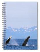Humpback Pectoral Fins Spiral Notebook