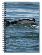 Humpback Tail Fins Spiral Notebook