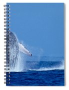 Humpback Whale Breaching Spiral Notebook