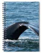 Humpback Whale Of A Tail Spiral Notebook