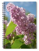 Hungarian Lilac 4 Spiral Notebook