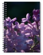 Hungarian Lilac 5 Spiral Notebook