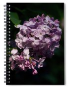 Hungarian Lilac 7 Spiral Notebook