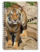 Hunger Tiger Spiral Notebook
