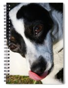 Hungry Dog Spiral Notebook