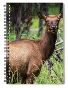 Hungry Elk Spiral Notebook