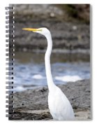 Hungry Great Egret Spiral Notebook