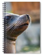 Sea Lion Spiral Notebook