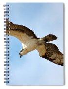 Hunter Osprey Spiral Notebook