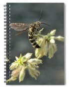Hunter Wasp Spiral Notebook