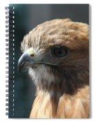 Hunter's Spirit Spiral Notebook
