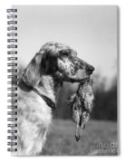 Hunting Dog With Quail, C.1920s Spiral Notebook