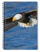 Hunting Eyes Spiral Notebook