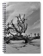 Hunting Island Beach And Driftwood Black And White Spiral Notebook