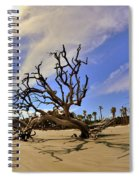 Hunting Island Beach And Driftwood Spiral Notebook