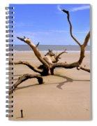 Hunting Island Beach Beaufort Sc Spiral Notebook