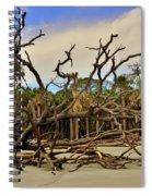 Hunting Island Driftwood Beach Beaufort Sc Spiral Notebook