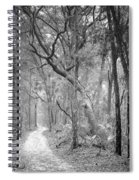 Hunting Island Path  Spiral Notebook