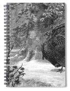Hunting: Wild Turkey, 1886 Spiral Notebook